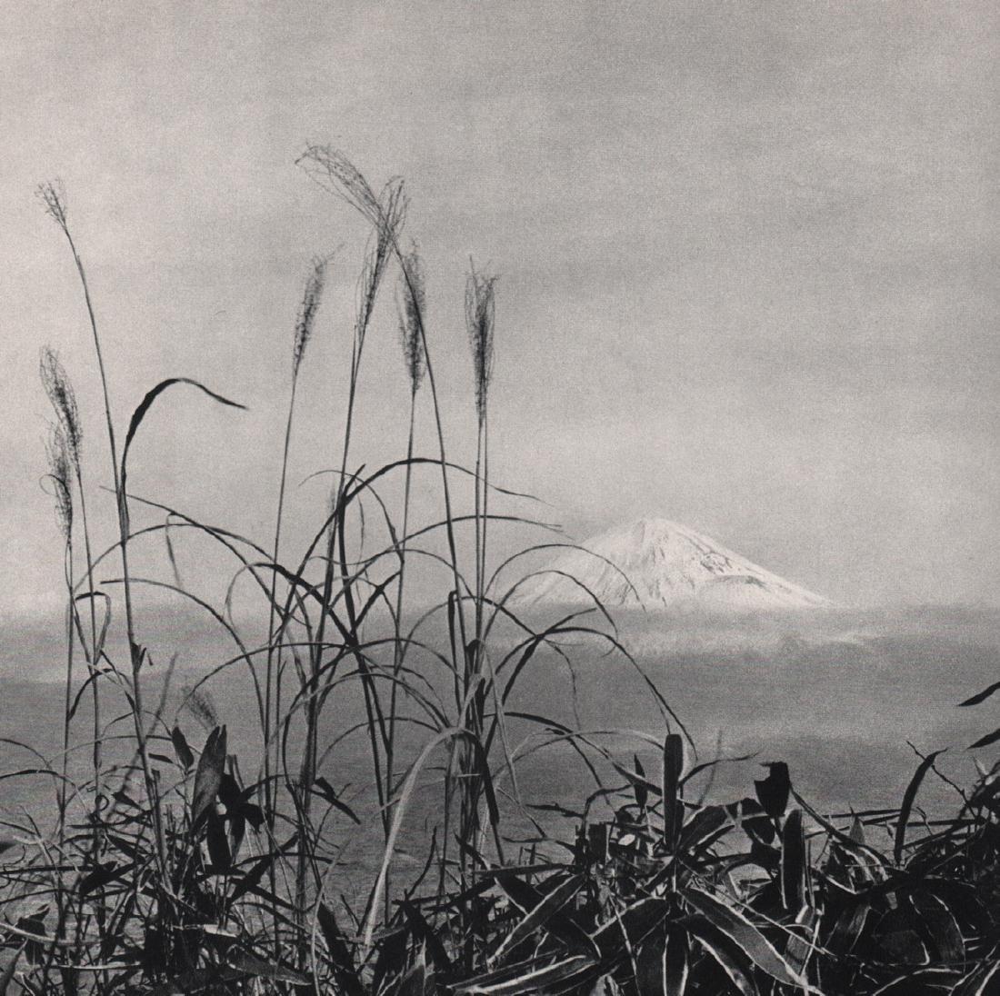 FRITZ HENLE - Fujiyama, 1936