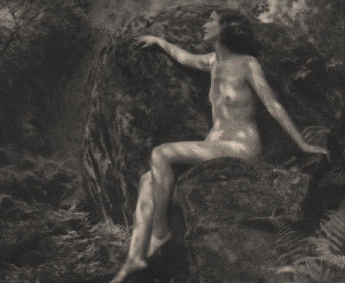 HAROLD ORNE - Woodland Shadows