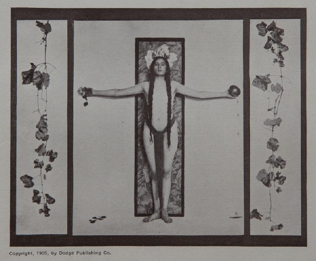 ADELAIDE HANSCOM - Wine of Life