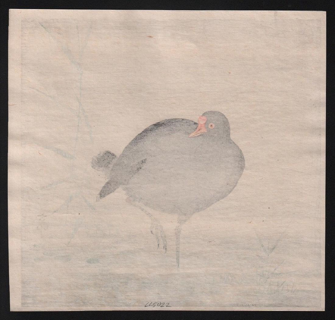 Ohara Koson Woodblock Gallinule bird - 2