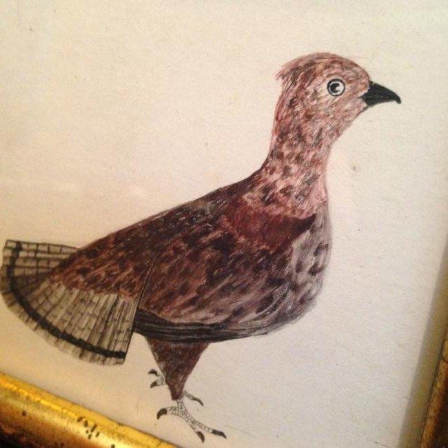 1840 Partridge Watercolor - 2