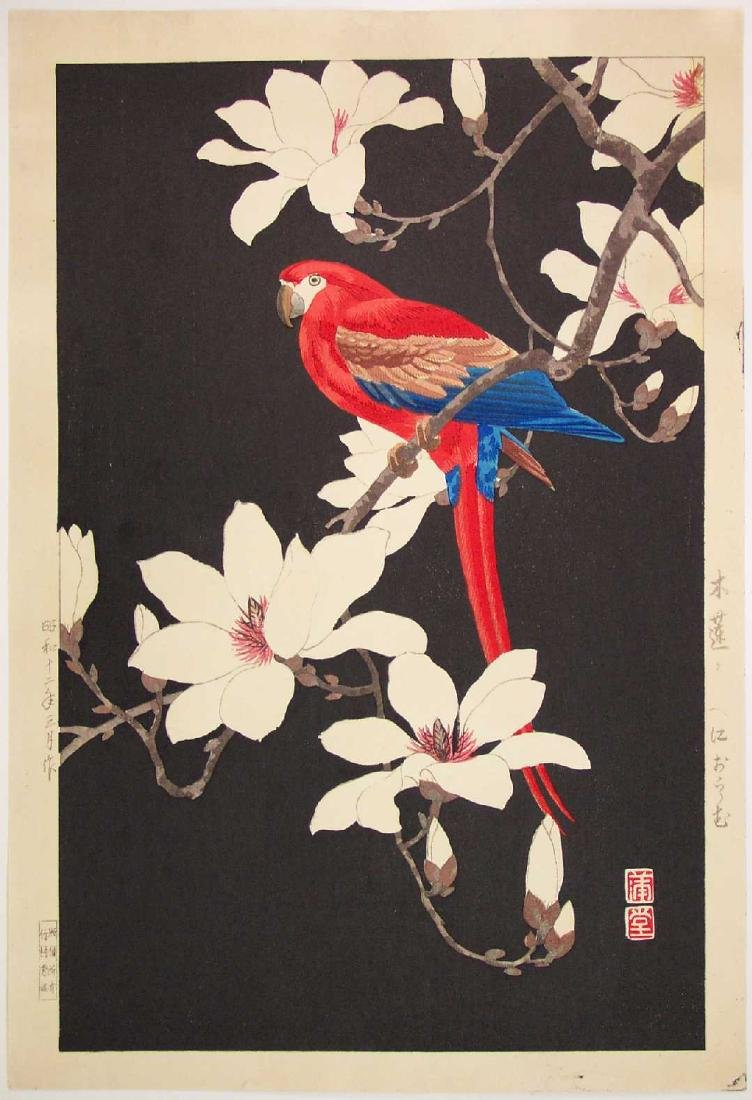 Hodo Nishimura Woodblock Red Parrot and Magnolia