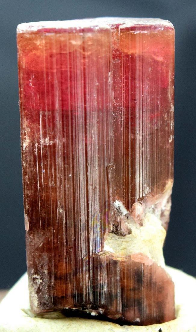 Terminated Natural Rubelite Tourmaline Crystal