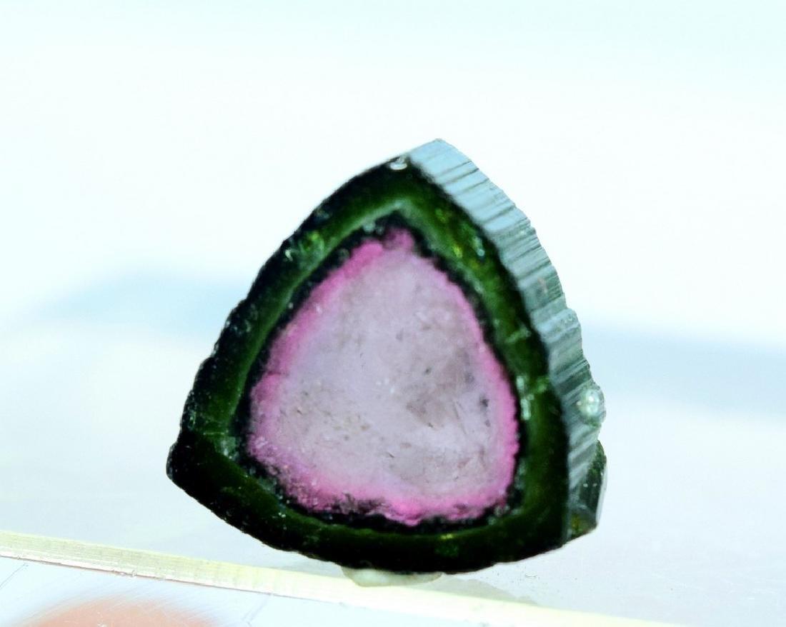 Watermelon Tourmaline Slice - 7