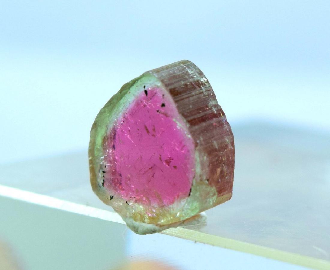 7.95 carats watermelon tourmaline slice - 3