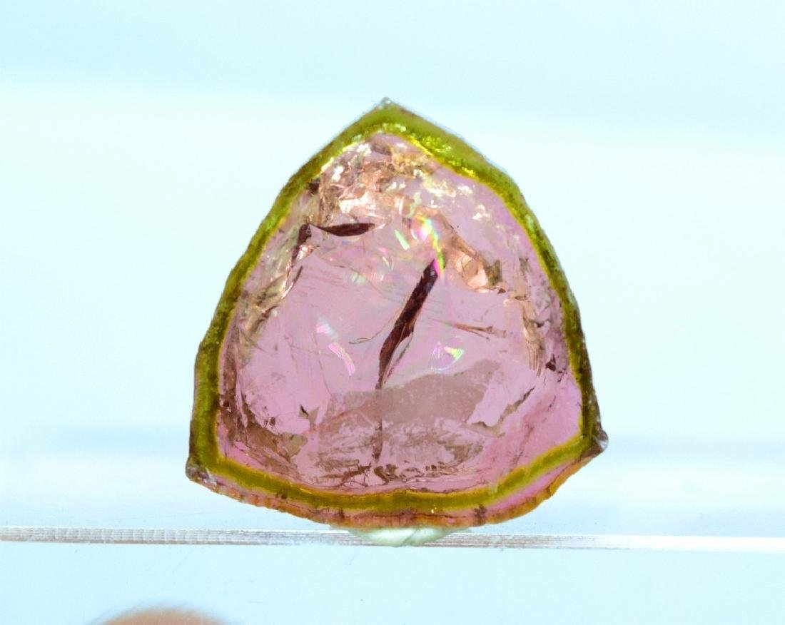 Watermelon Tourmaline Slice