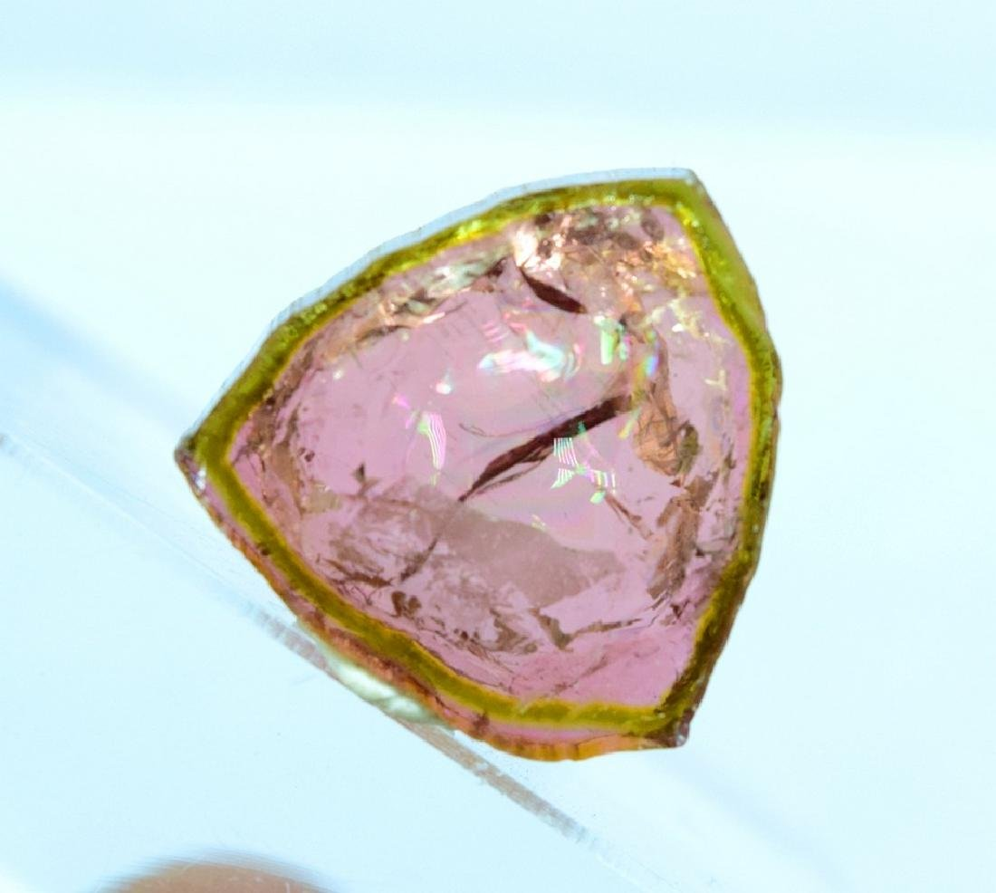 Watermelon Tourmaline Slice - 4