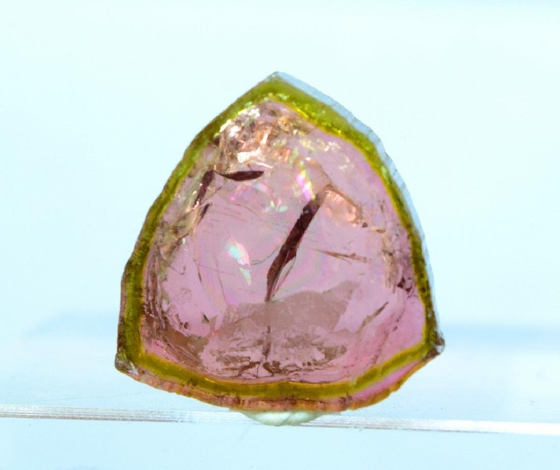 Watermelon Tourmaline Slice - 5