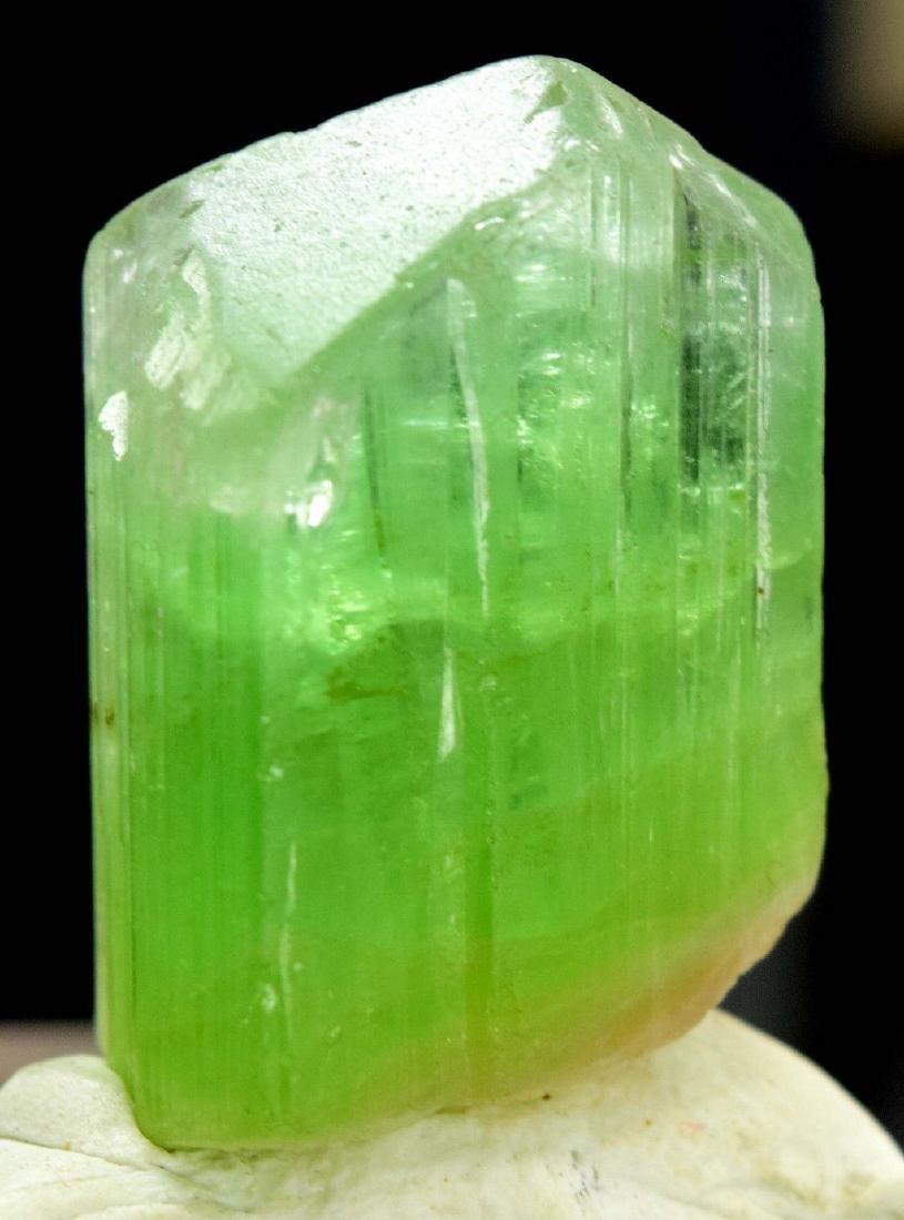 Terminated & Undamaged Natural Tourmaline Crystal