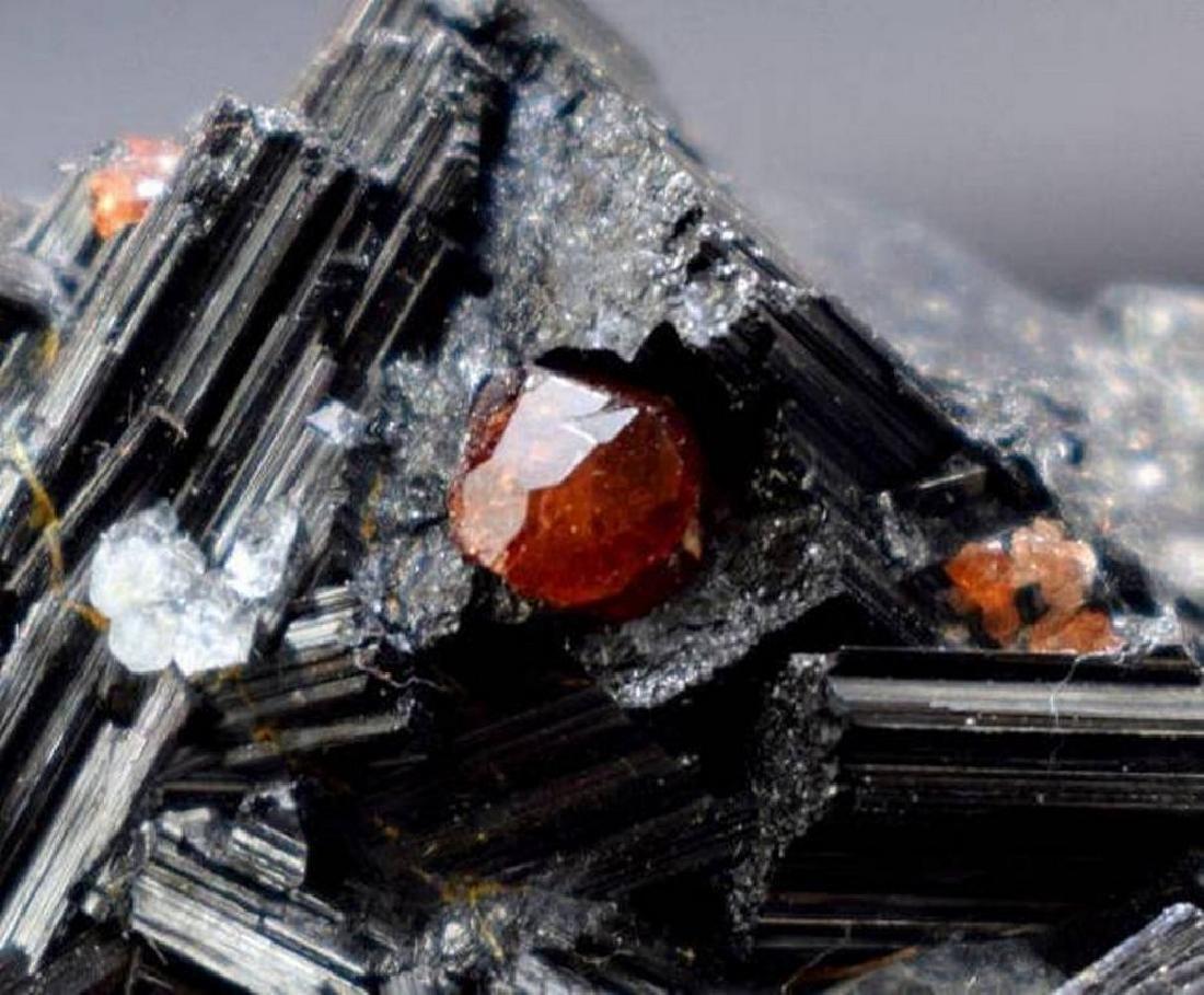 Red Garnet with Black Tourmaline Schrol & Blue Quartz - 5