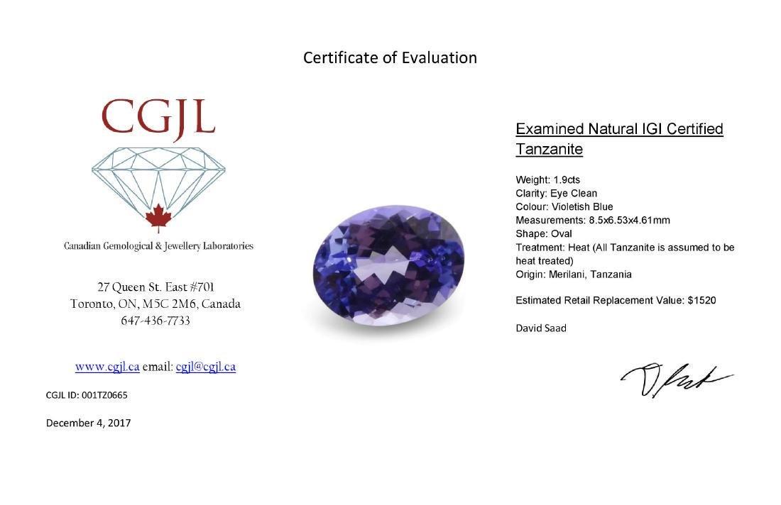 1.9 Carat Loose Oval IGI Certified Tanzanite - 7