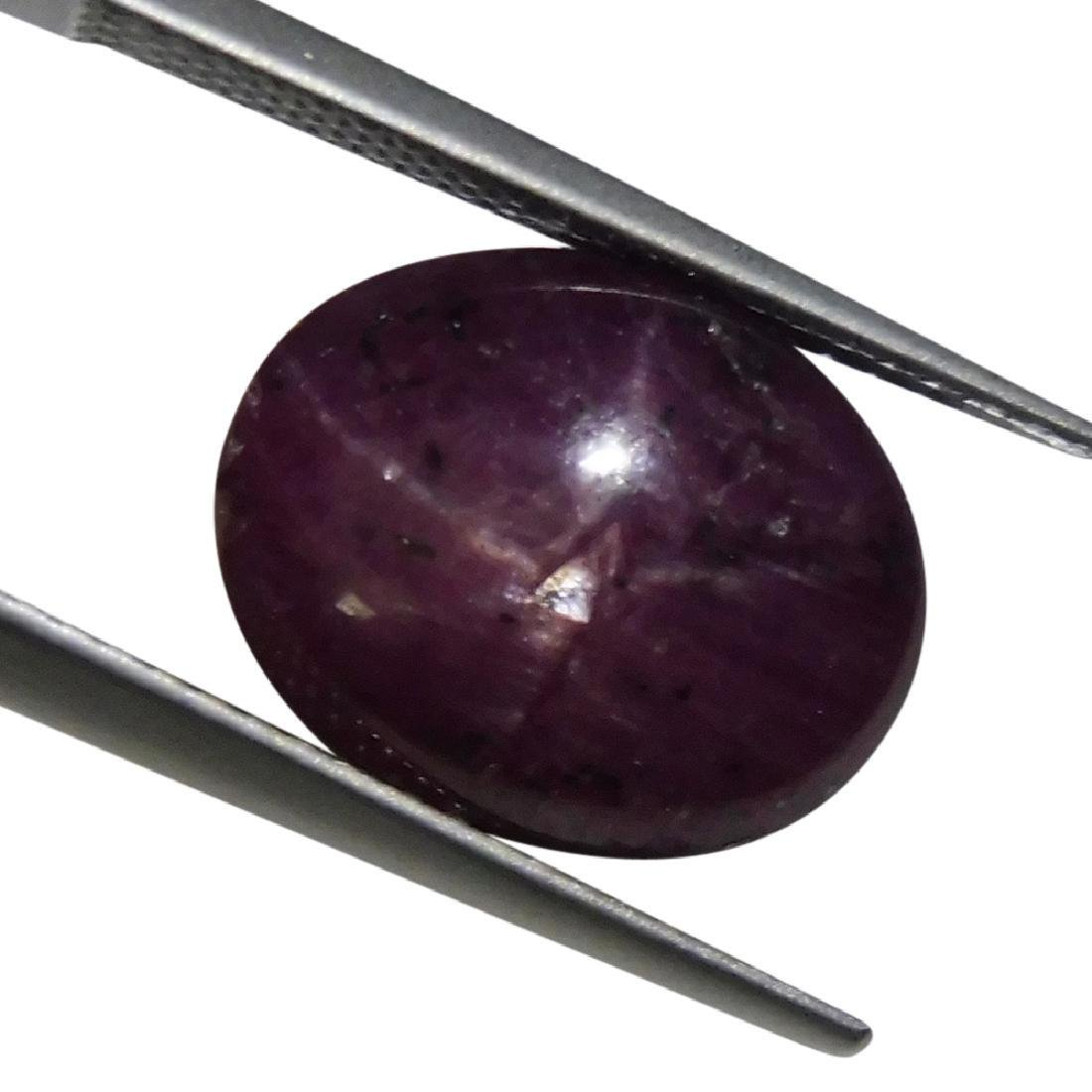 11.13 Carat Loose Oval Star Ruby - 3