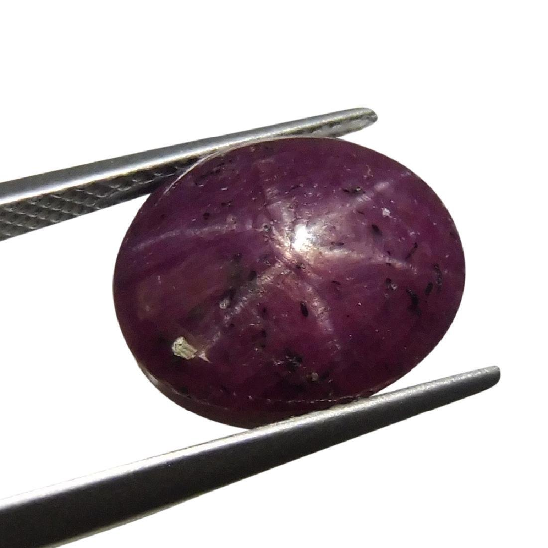11.13 Carat Loose Oval Star Ruby - 6