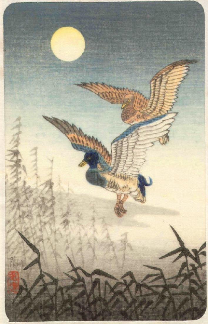 Tsuchiya Koitsu Woodblock Duck