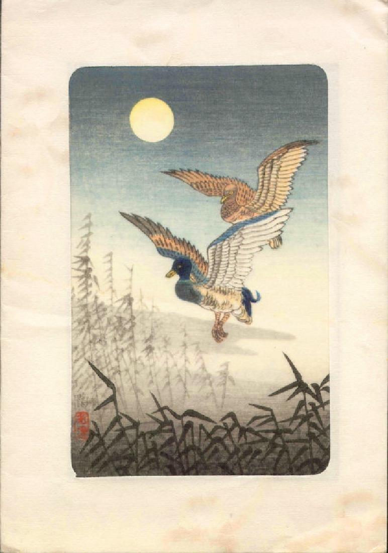 Tsuchiya Koitsu Woodblock Duck - 2