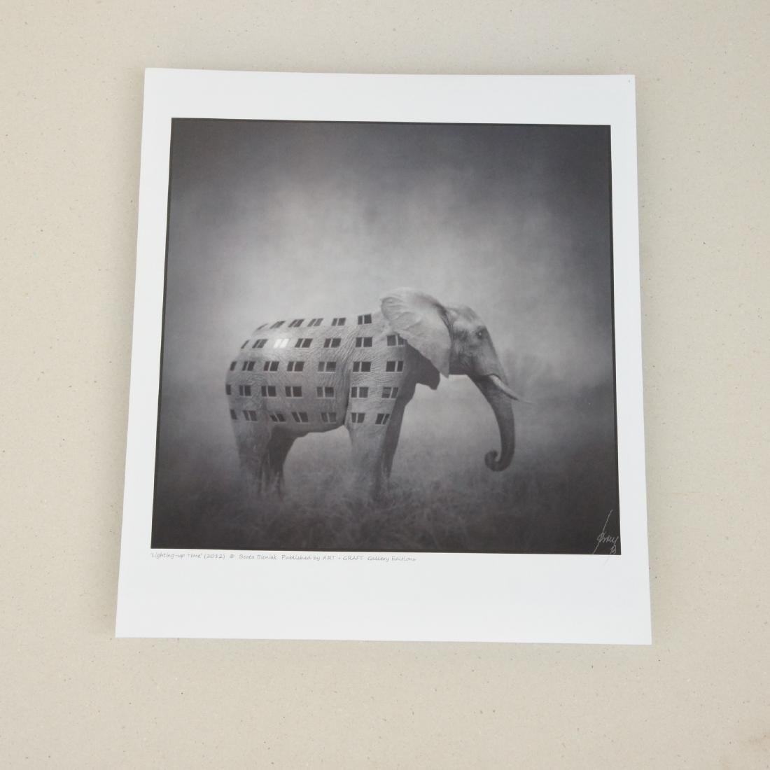 Beata Bieniak - Print - Lighting-up time - 2