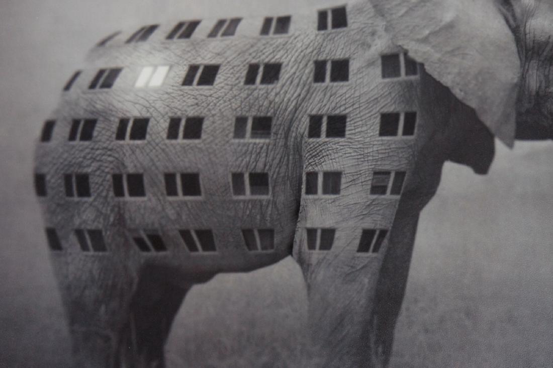 Beata Bieniak - Print - Lighting-up time - 8