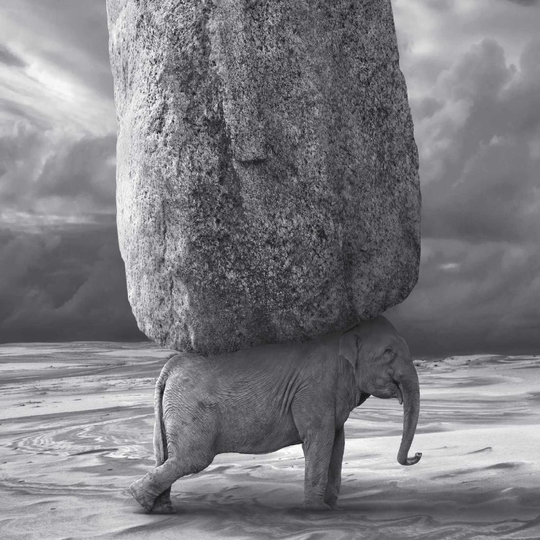 Dariusz Klimczak - Print - Relativity - 8