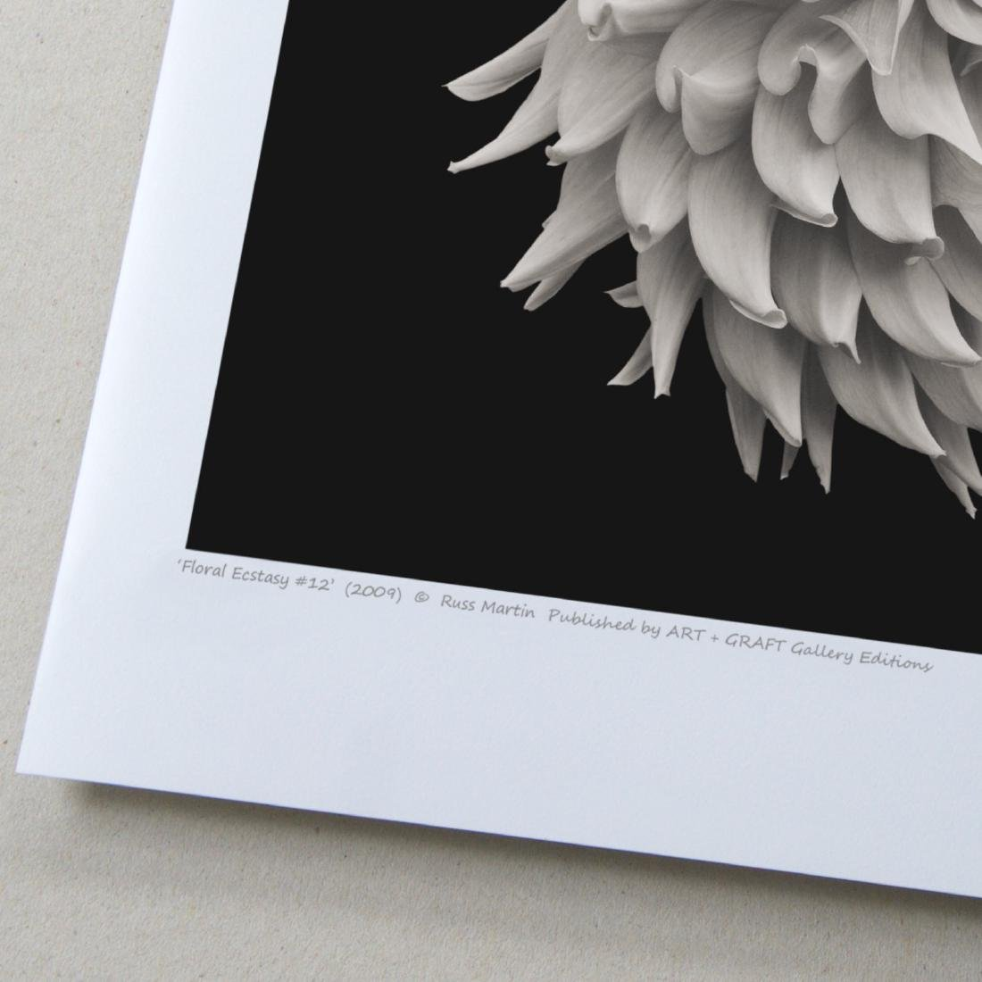 Russ Martin - Print - Floral Ecstasy #12 - 3