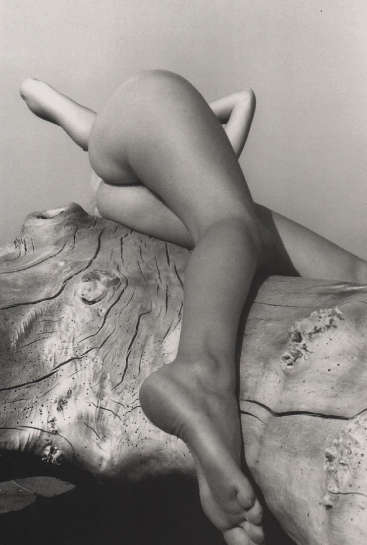LUCIEN CLERGUE -  Nude