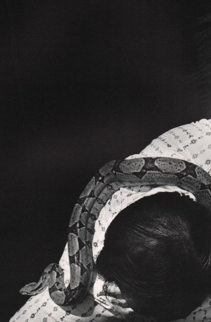 RALPH GIBSON - Snake