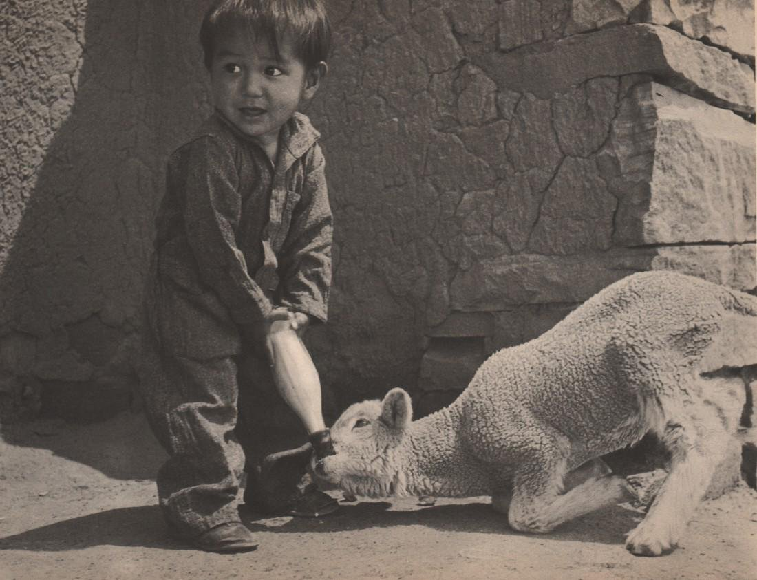 WALTER HERDEG - Lamb and Boy