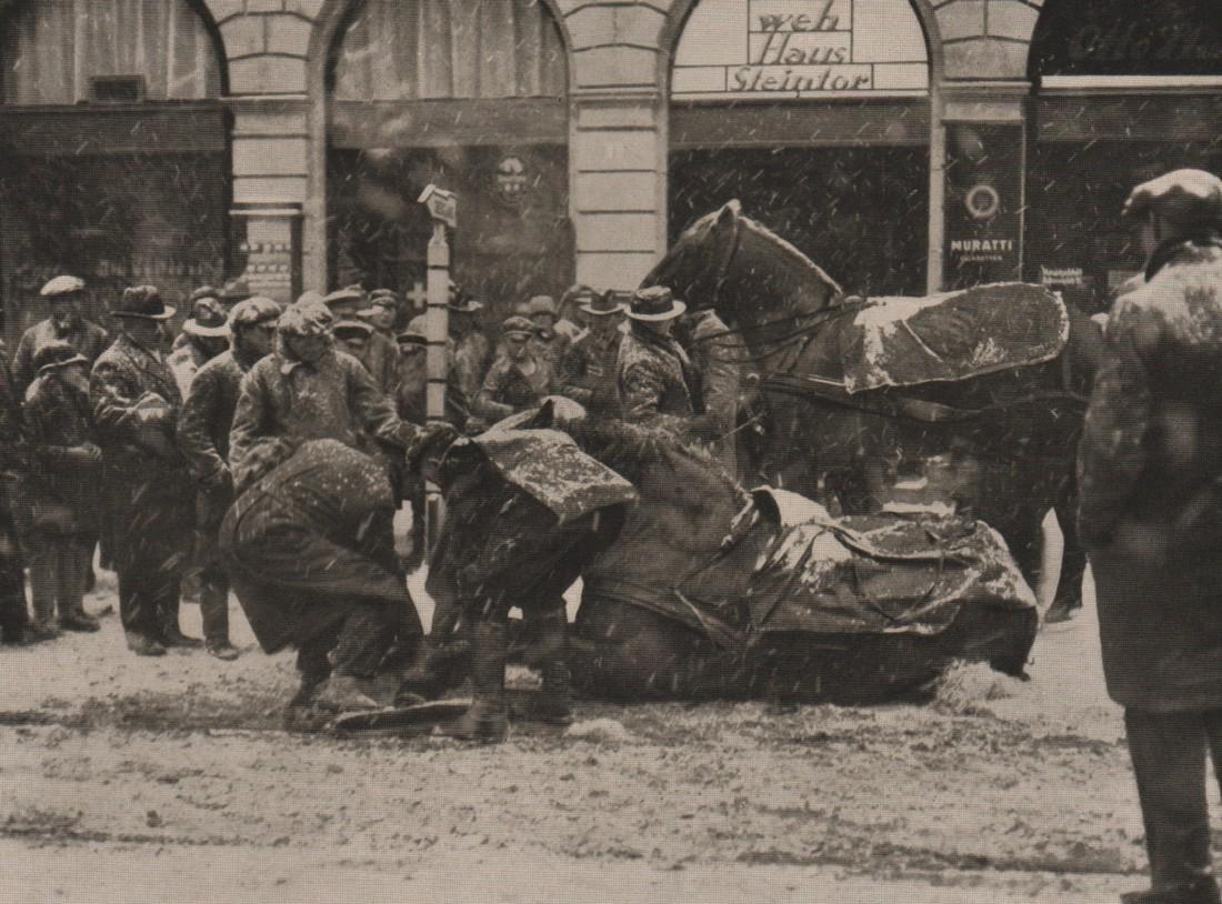 HEINRICH KOMMEREIN- Fallen Horse