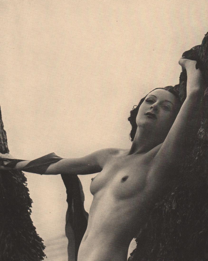 ROYE- Nude Study