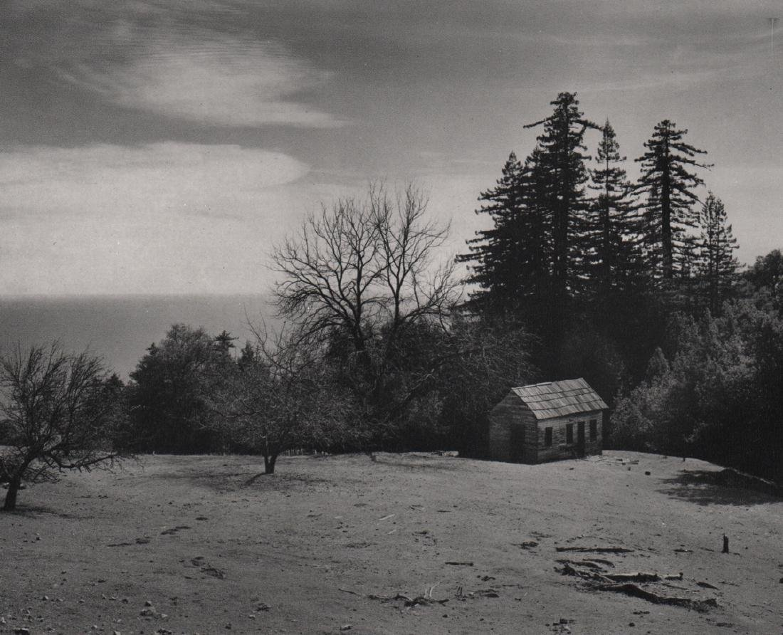 COLE WESTON -  Cabin, redwoods and Pacific