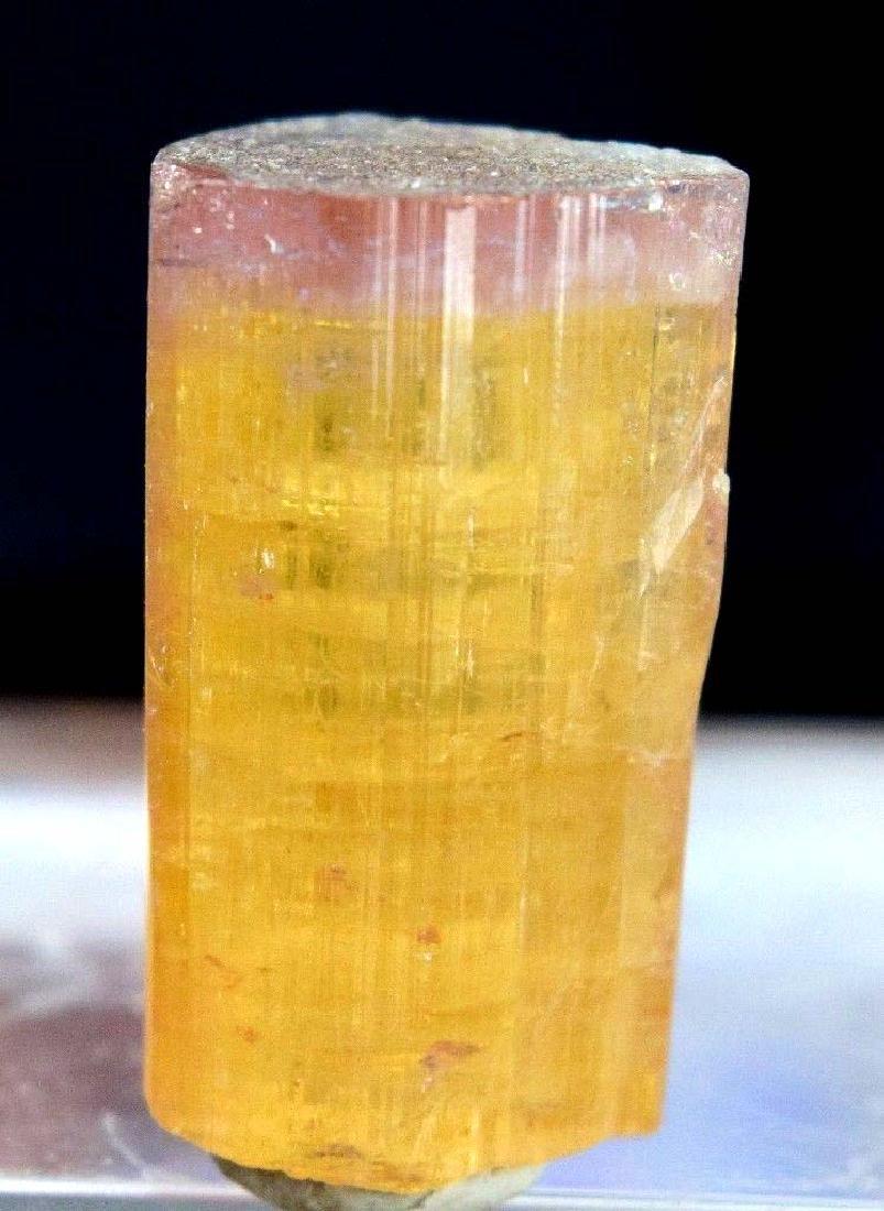 13 gram terminated and undamaged blue cap bi-color - 2