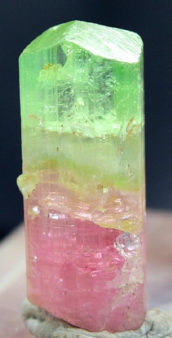55 carats Top Quality Bi Color Super Gemmy & Natural - 3