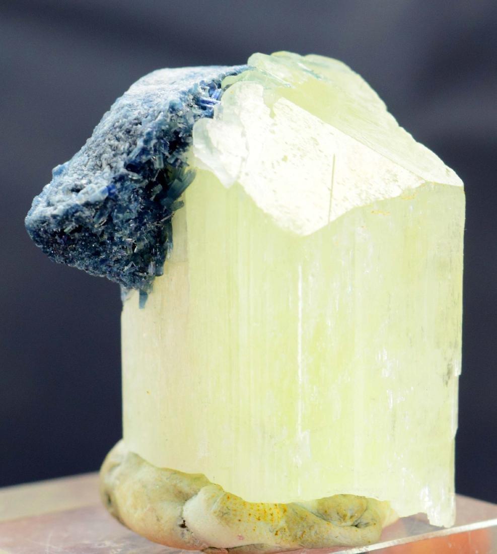 Terminated Natural Kunzite with Blue Tourmaline