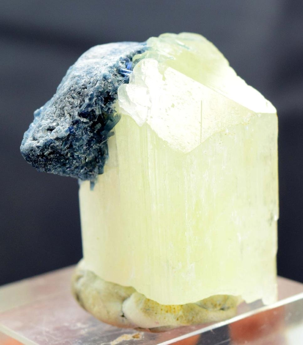Terminated Natural Kunzite with Blue Tourmaline - 3