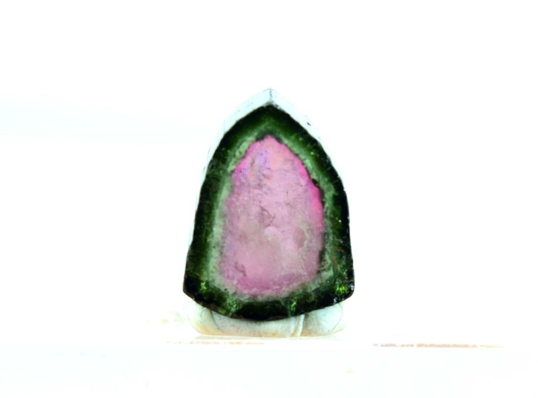 11.05 cts watermelon tourmaline slice - 5