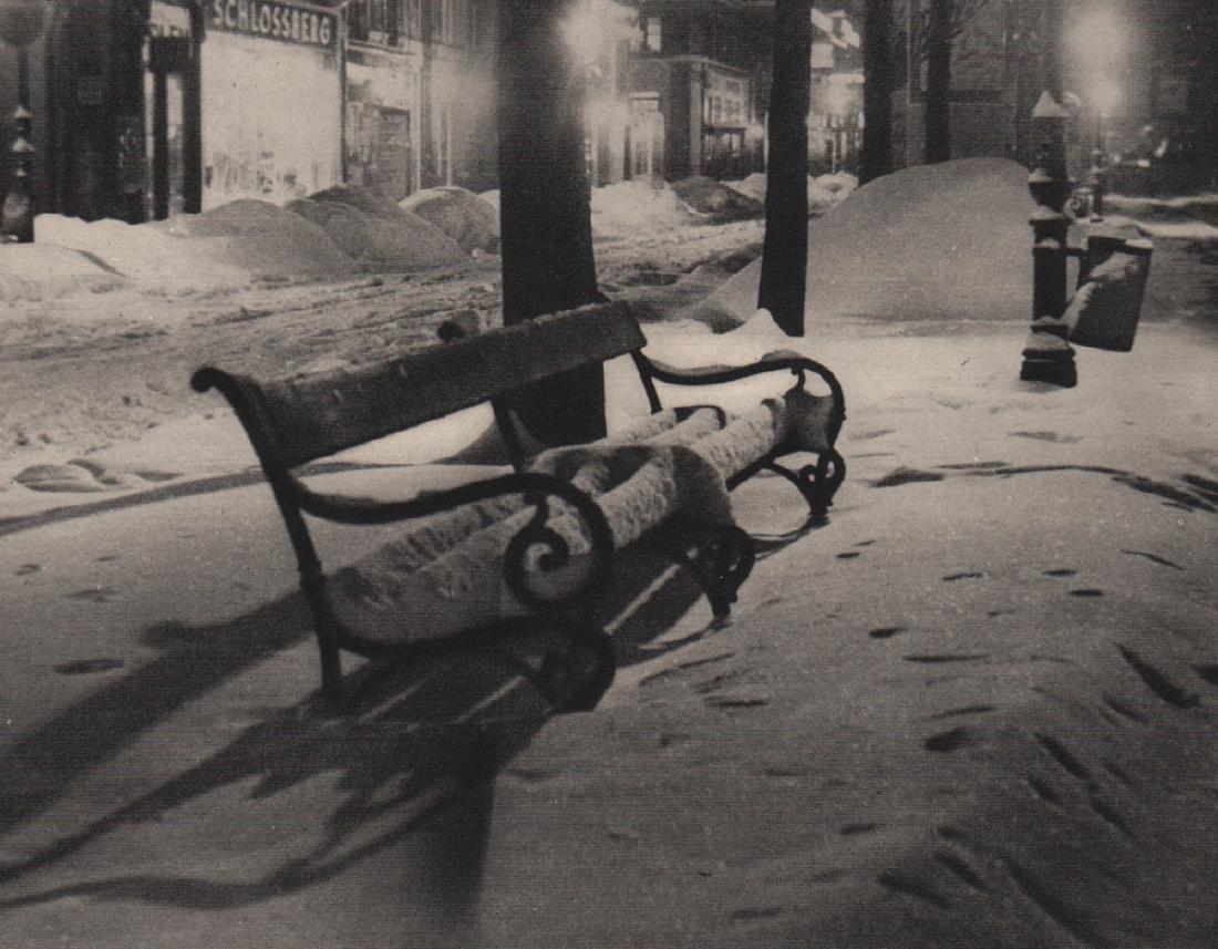 TRUDE FLEISCHMANN - Vienna under Snow