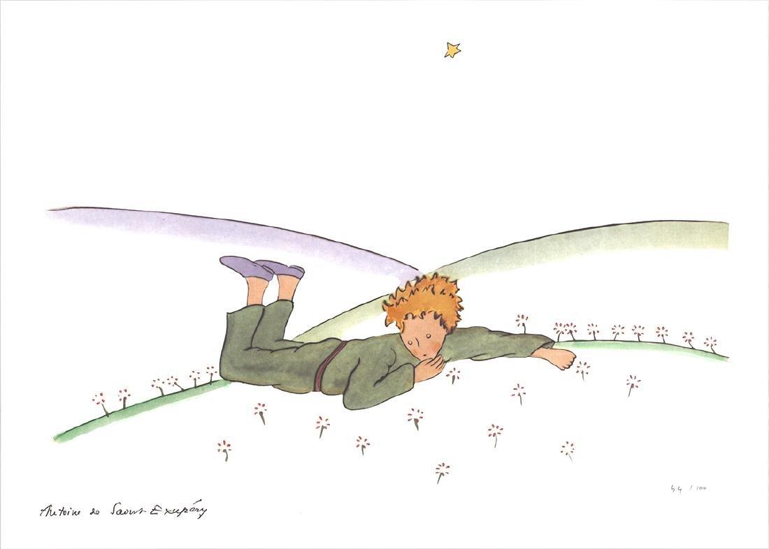 Antoine de Saint Exupery - The Little Prince Dreaming
