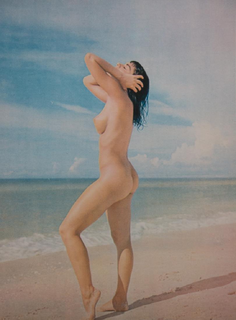 ANDRE DE DIENES - Color Nude