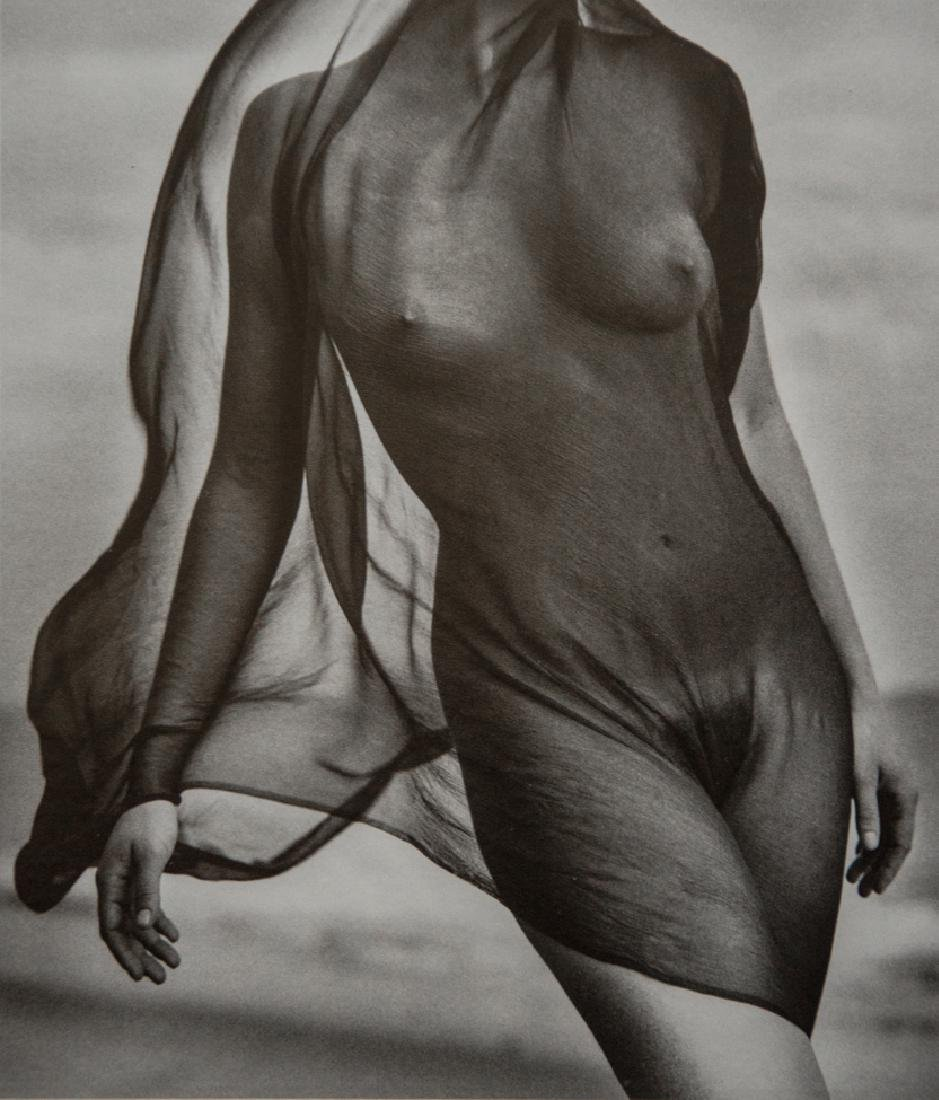 HERB RITTS - Nude, Veiled Torso 1984