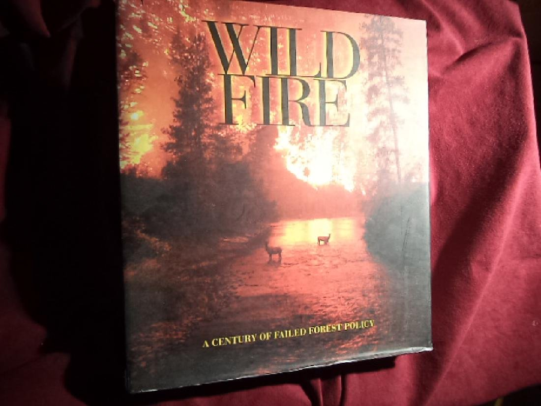 Wild Fire. A Century of Failed Forest Policy.