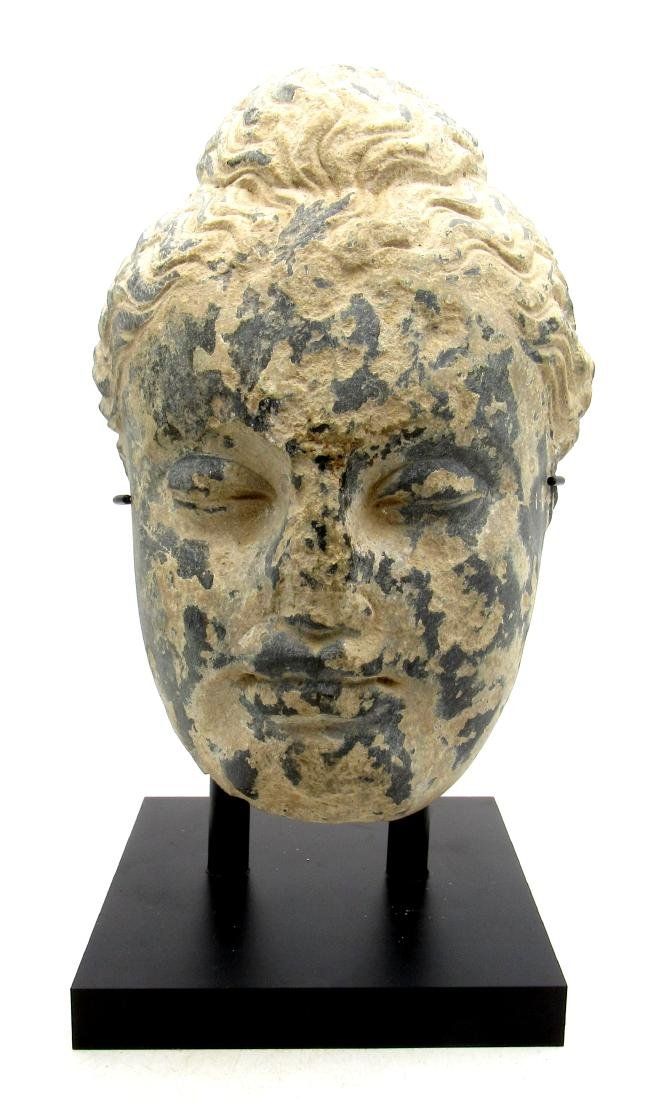 Ancient Gandhara Schist Stone Statue of Buddha's Head