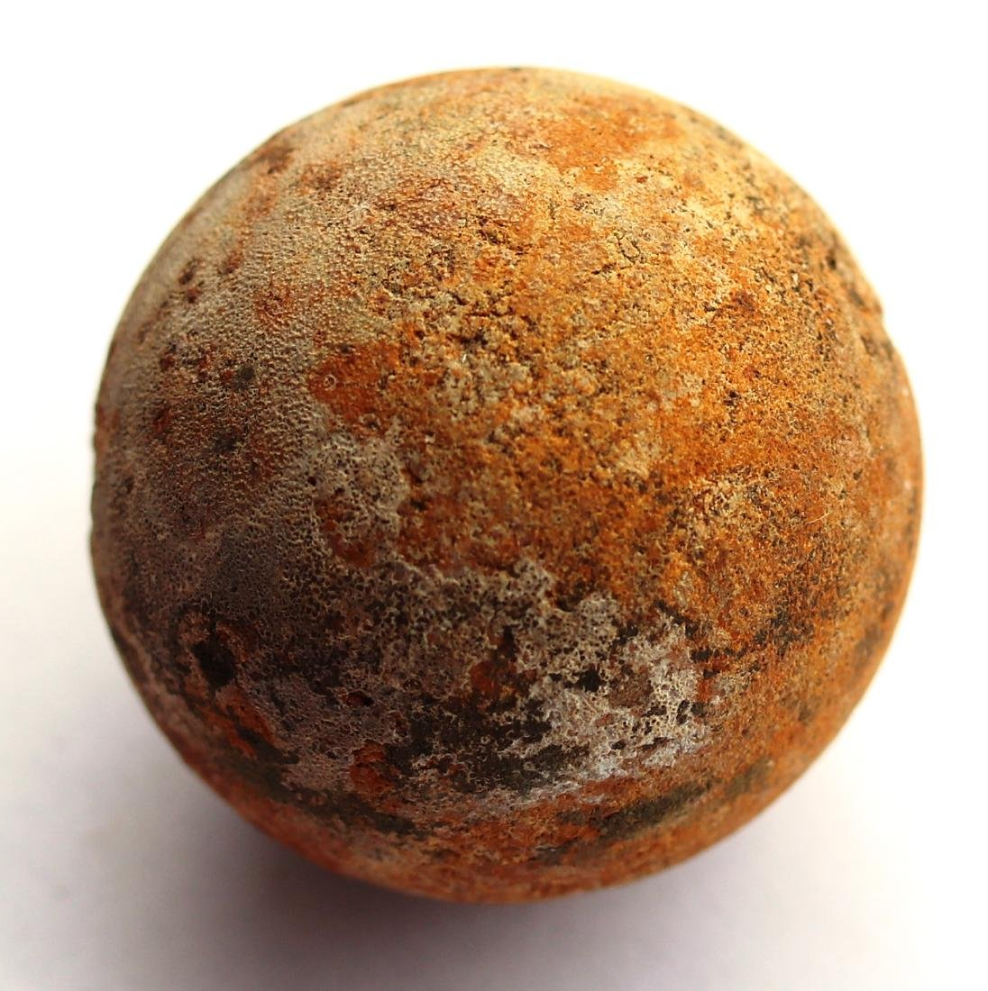 Perfect unhatched fossil turtle egg : Testudoolithus - 5