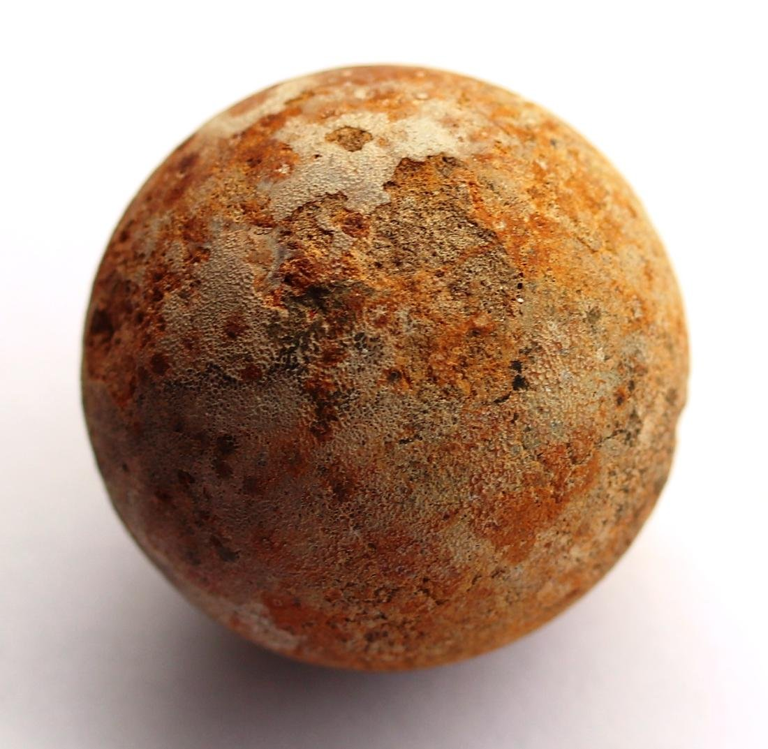 Perfect unhatched fossil turtle egg : Testudoolithus - 7
