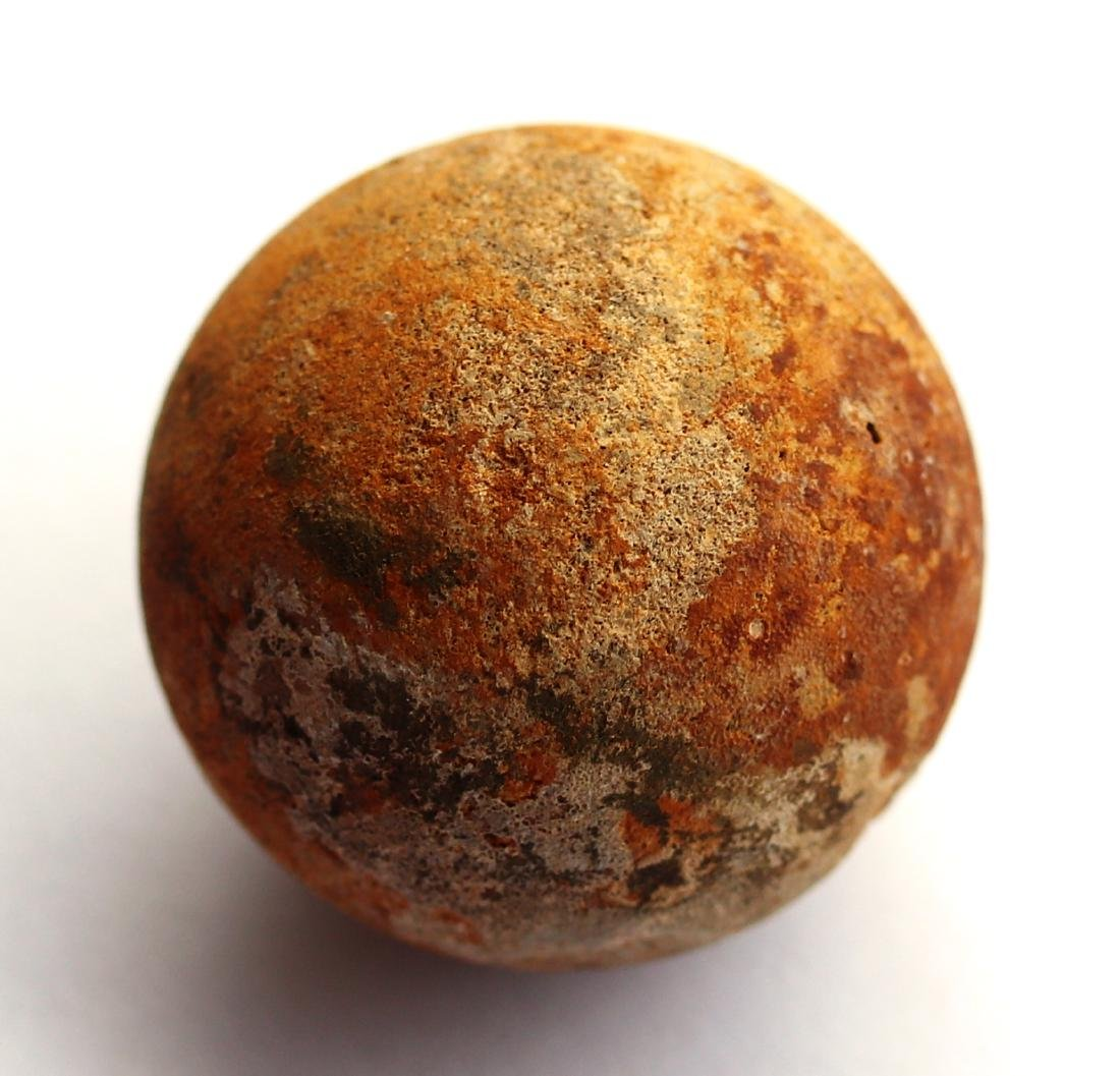 Perfect unhatched fossil turtle egg : Testudoolithus - 8