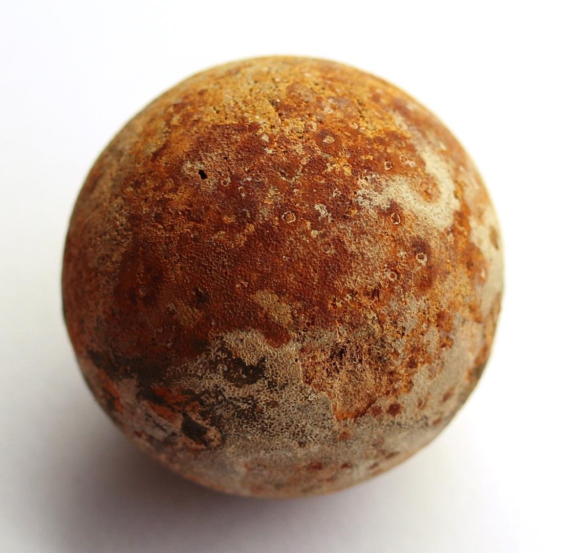 Perfect unhatched fossil turtle egg : Testudoolithus - 9