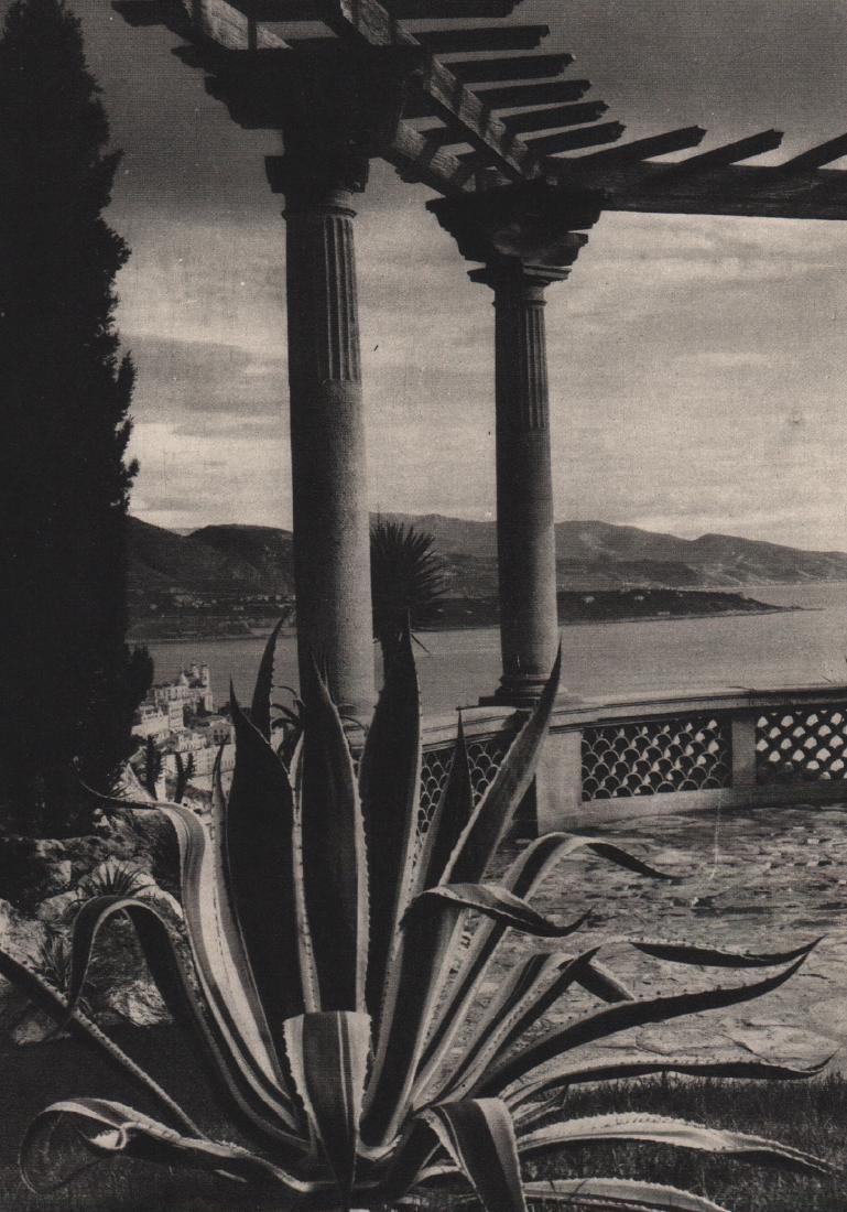 JOHN HAVINDEN - Monte Carlo