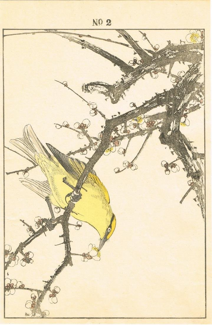 Imao Keinen Woodblock Yellow Bird Picking at a Blossom