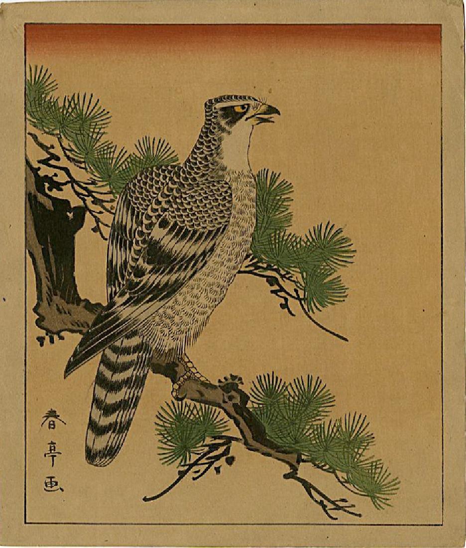 Shuntei Katsukawa Woodblock a Falcon