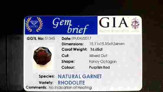 1665ct GIA Cert untreat vivid Rhodolite Garnet VS