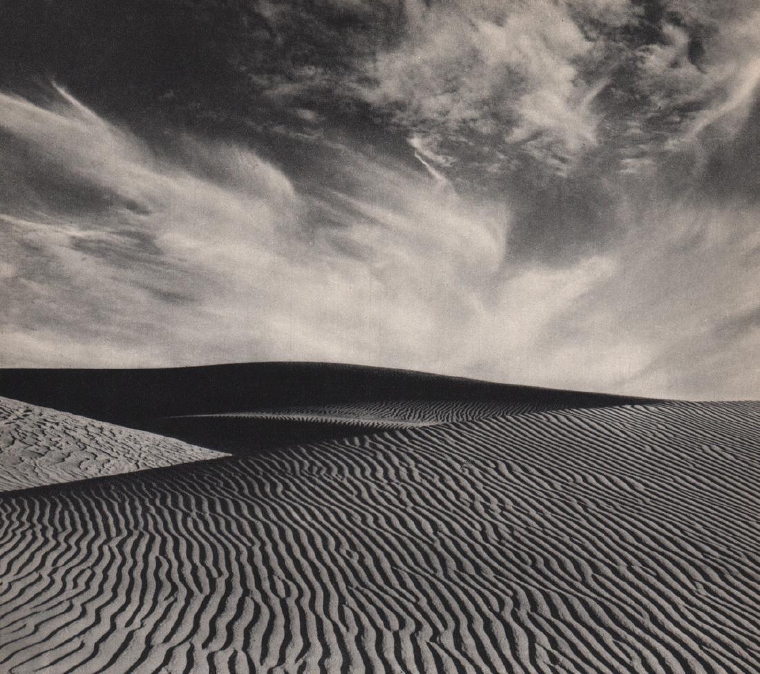 EDWARD WESTON - Sand Dune