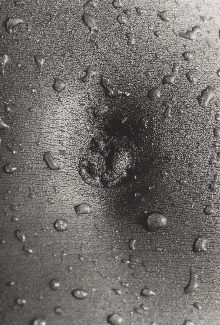 LUCIEN CLERGUE -  Wet Navel